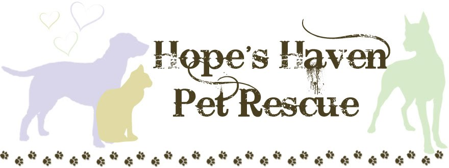 Hope's Haven Pet Rescue