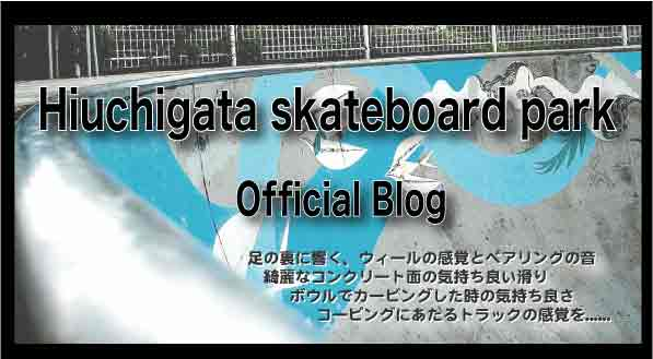 Hiuchigatask8boardpark