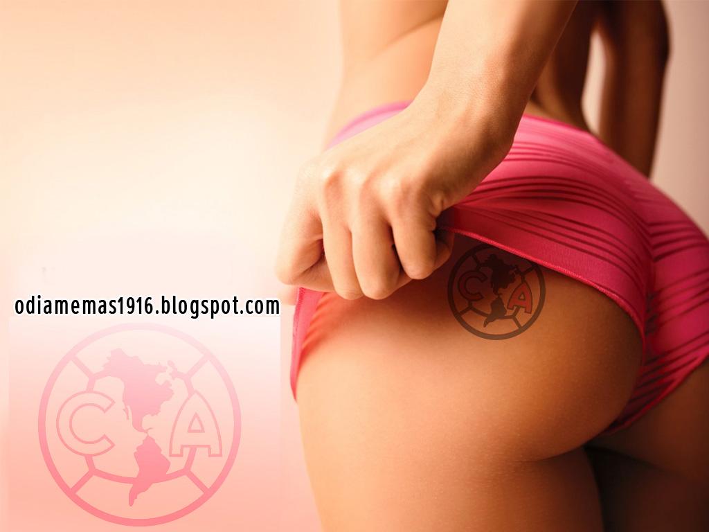 Videos of sex in america