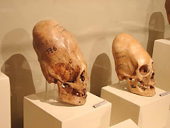 Simbolos de belleza maya