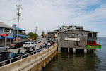 Photos of Cedar Key