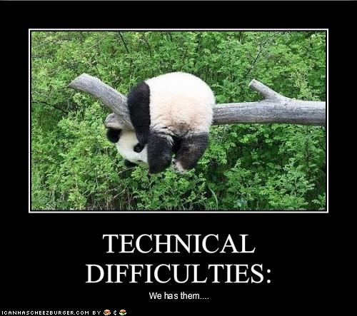 funny-pictures-panda-has-technical-diffi