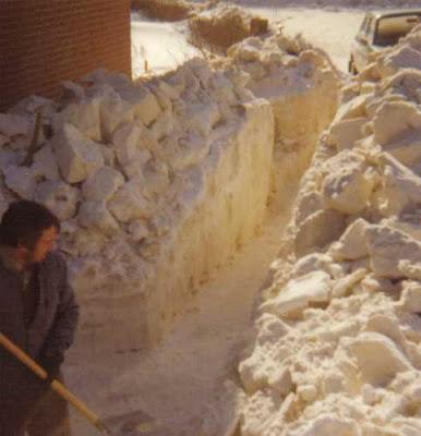 Skovlet sti gennem snemasserne ved Havrevænget 1979