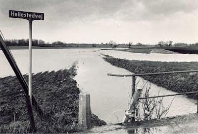 Oversvømmelse ved Stevnsåen - klik for større billede