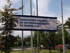 Asociacion de Microempresarios de Ñuñoa