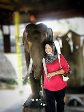 .: ME vs ELEPHANT :.