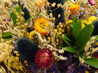 Сухите цветя  Dry_flower9