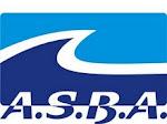 Asociacion de Surf y Bodyboarding de Argentina