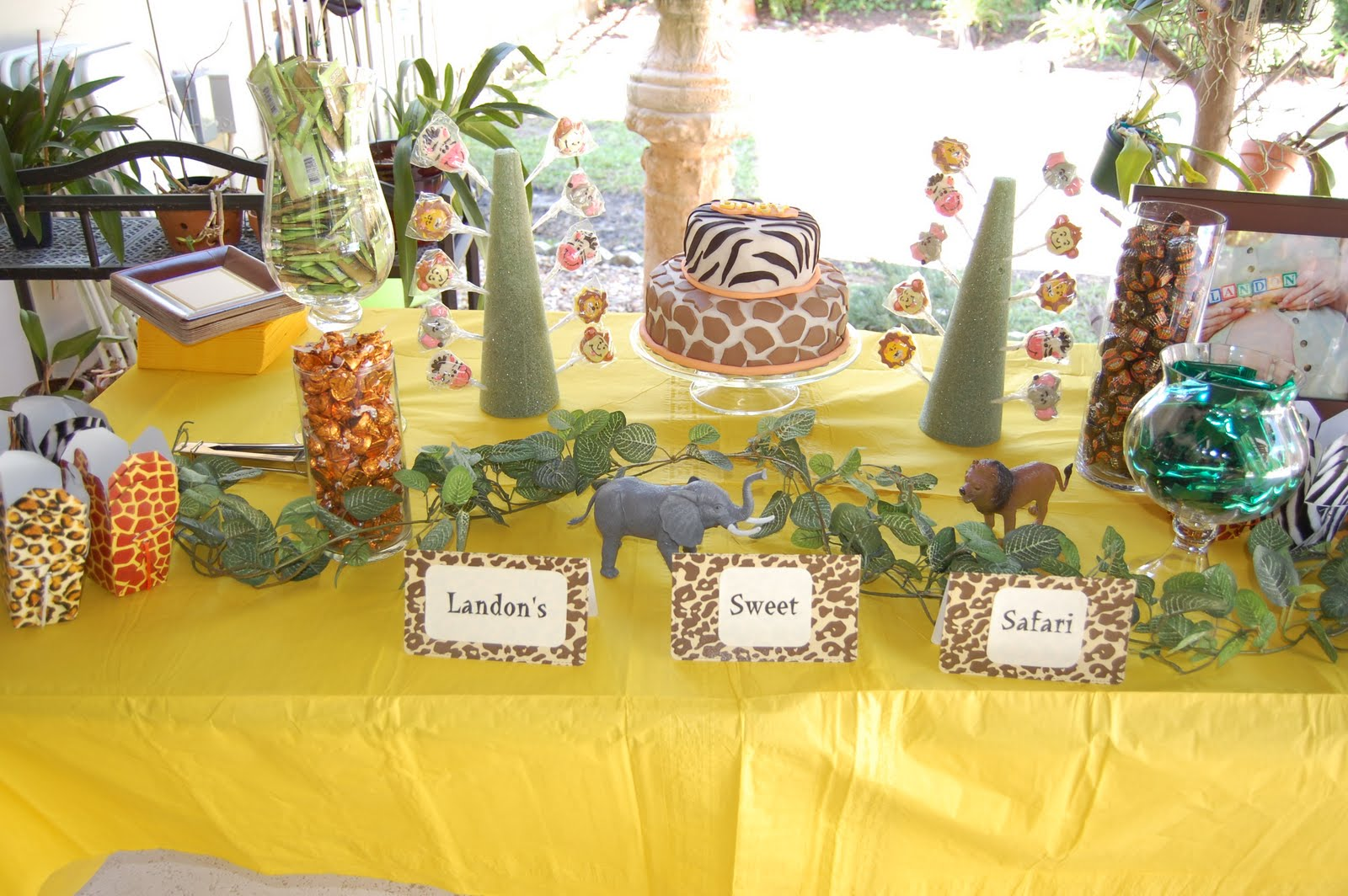 A flawless blog a sweet safari baby shower for Baby shower safari decoration