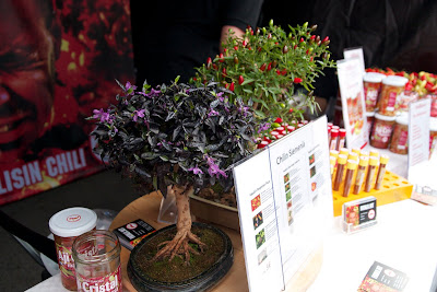 chilibonsai
