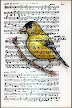 American Goldfinch Pen and Ink watercolor by Rita