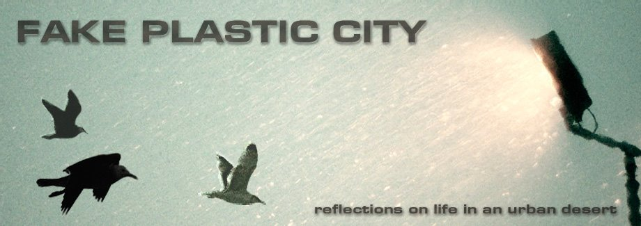 FAKE PLASTIC CITY