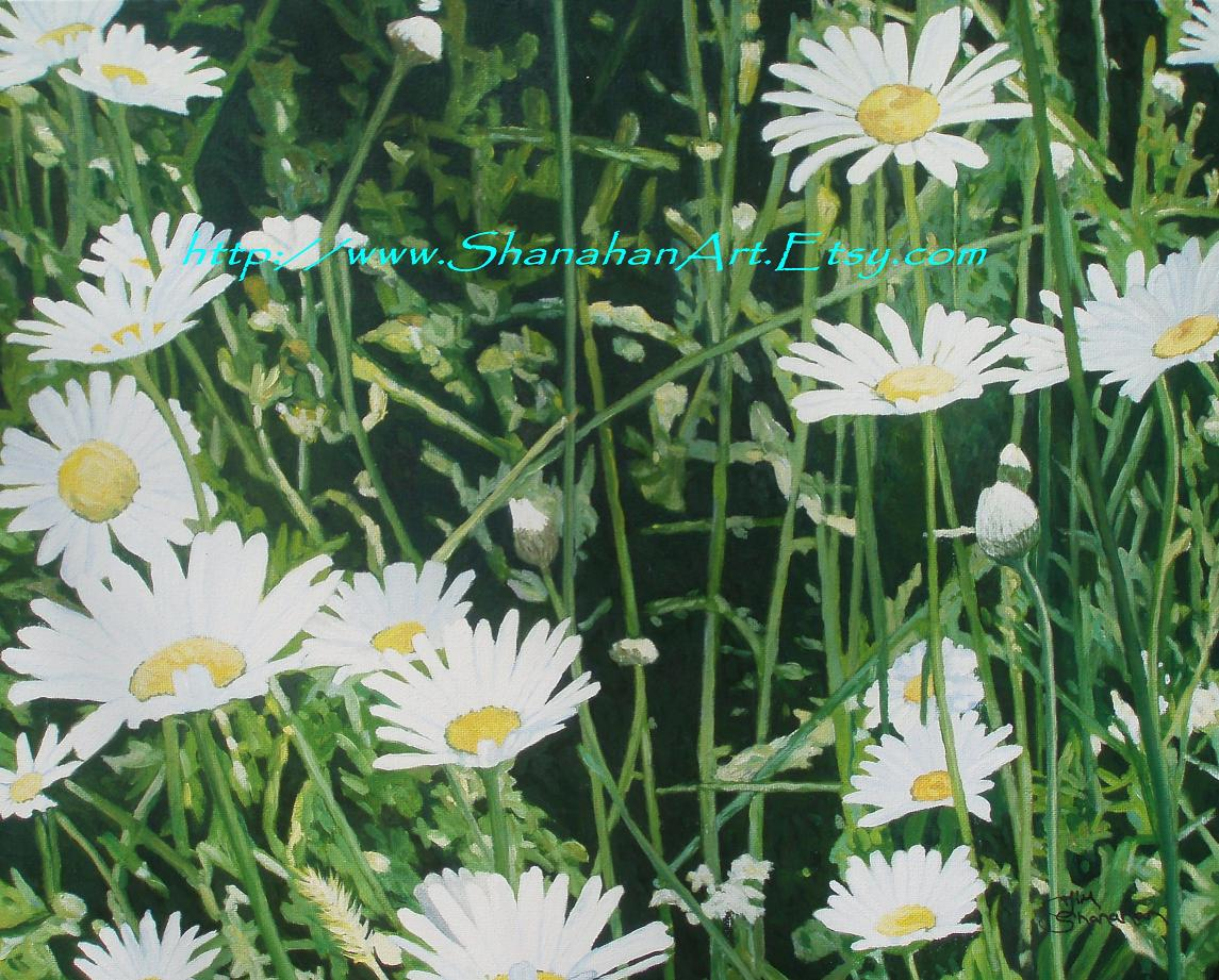 Daisy Meadow -- For Sale Framed 500