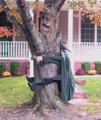 [Image: witch+in+tree+2.JPG]