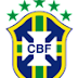 Brazil Football Squad in World Cup 2010 South Africa