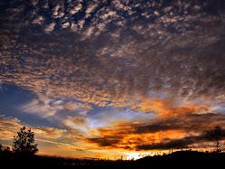 langit linge