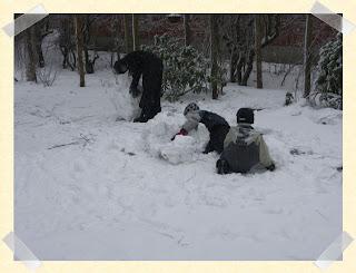 Der er nogen som nyder sneen igen i dag kom der sne jeg vil endda