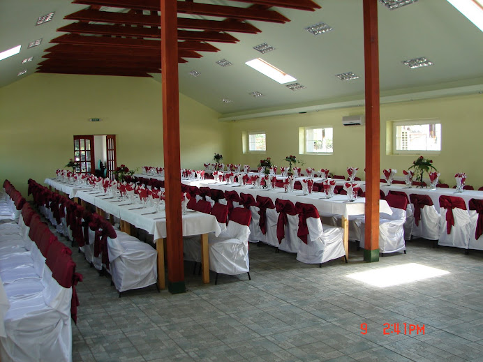 sala nuntii Logos(bordo)