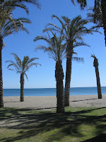 Torremolinos, palm trees