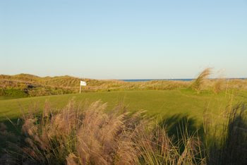 newport dunes golf club
