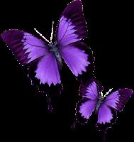 http://2.bp.blogspot.com/_utBg4DTksZ0/TOqdRCXVJgI/AAAAAAAAGRo/Lp2wKhlGkR4/s1600/InCopy-Purple.png