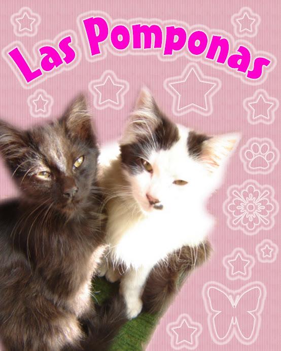 Las Pomponas (Chuscas)