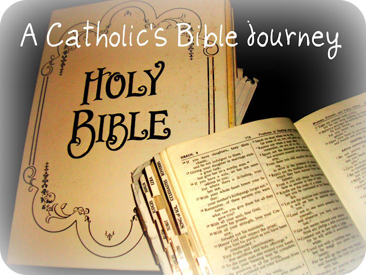 A Catholic's Bible Journey