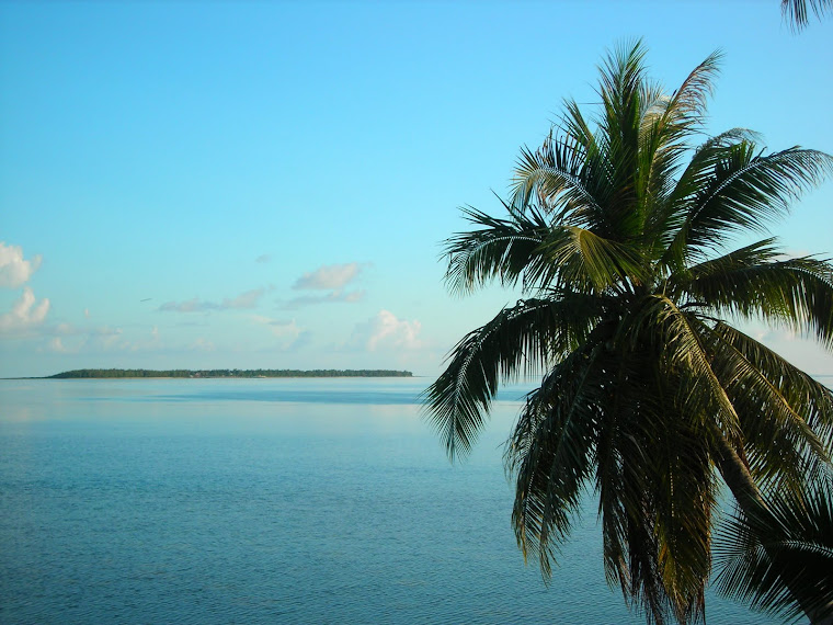 COCOS ISLANDGuam's Fantasy Island. COCOS ISLANDGuam's Fantasy Island (guam trip june )