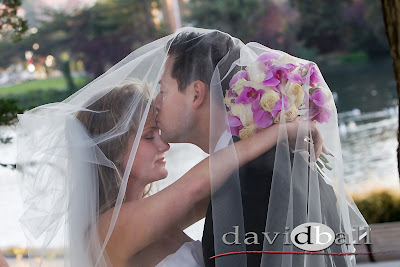 David Ball: Wedding Photographer in the San Francisco Bay Area