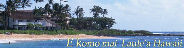 E komo mai   Laule'a Hawaii
