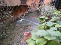 נהר בין הבניינים בבולוניה