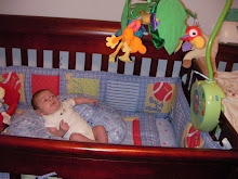 He loves his crib and the rainforest creatures