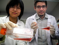 Na Xu (left) and Thales Papagiannakopoulos. Credit: George Foulsham/ Department of Public Affairs, UCSB.