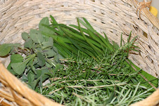 April herbs now being harvested . . .