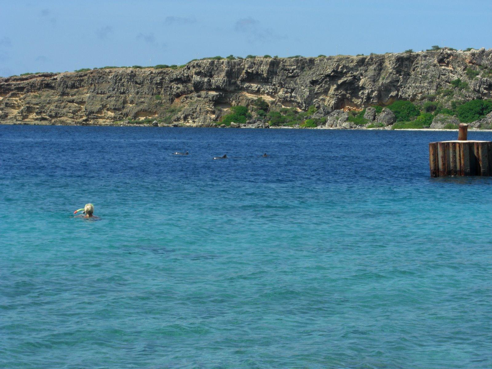 [Curacao+2008020.JPG]
