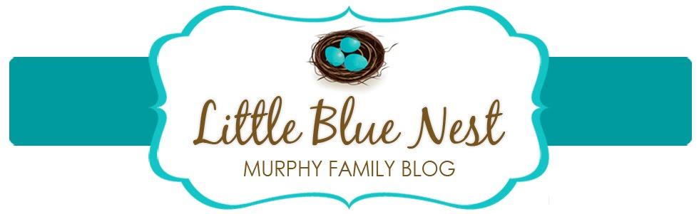Little Blue Nest