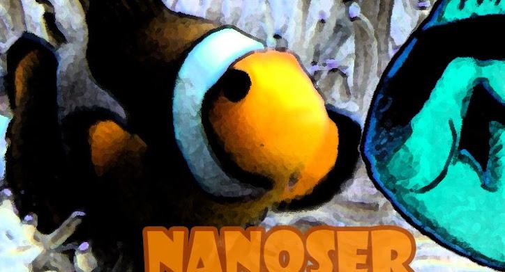 NANOSER