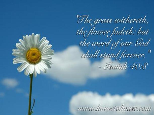 """The grass withereth, the flower fadeth: but the word of our God shall stand forever."" Isaiah 40:8"