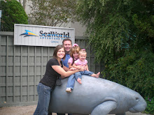 SeaWorld Aug. 2008