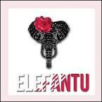 elefantu