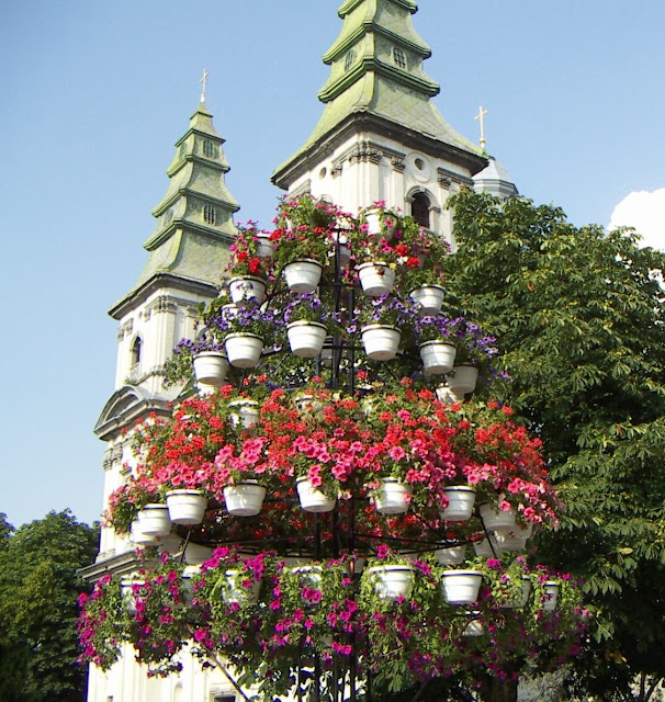 Flowerpots by the Church Ternopil