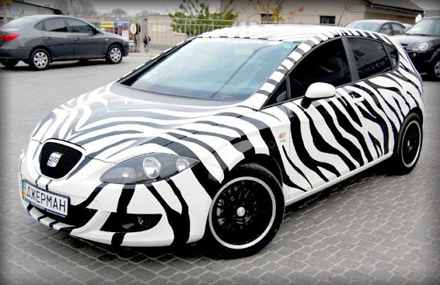 Zebra Seat Leon German Auto Ternopil