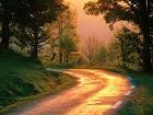 Currículo: caminho a percorrer