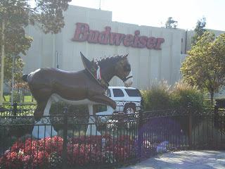 Skip this Budweiser