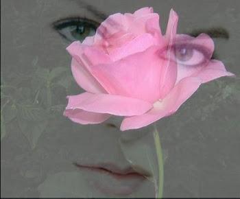 Simplesmente as rosas exalam...