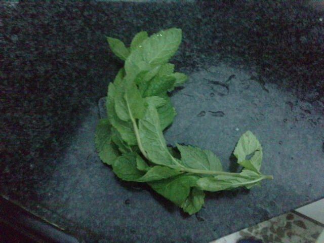 Cocina para novatos: Las mejores albondigas del mundo hechas por la ...