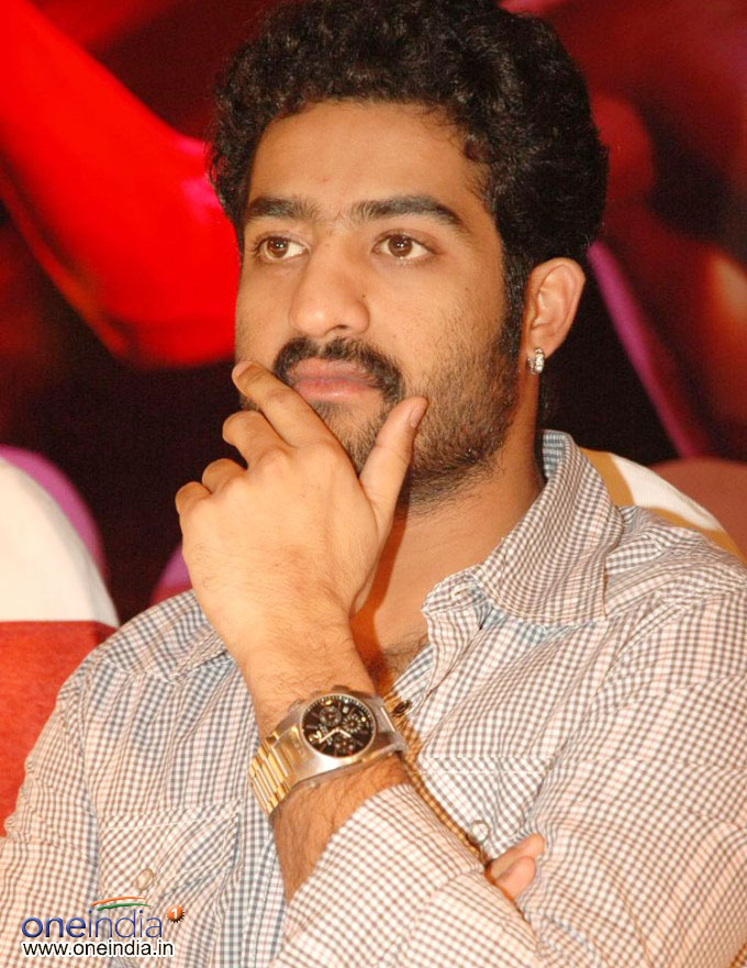 Film actor in Tollywood   Indra The Tiger Actor