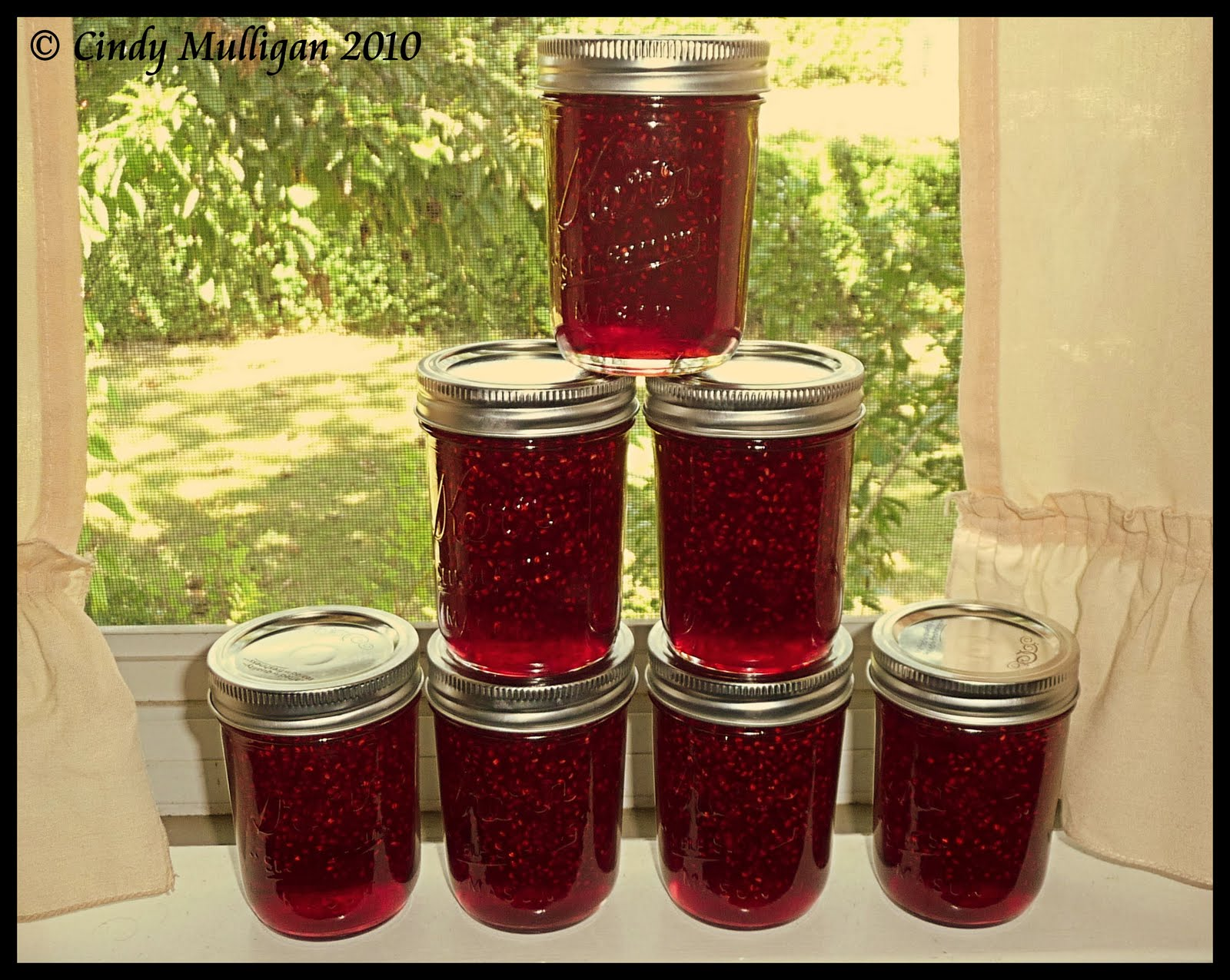 Raspberry Jam is my FAVORITE kind of jam. Love it! Since I've ventured ...