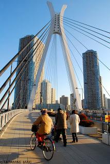 condos over the bridge, Tokyo