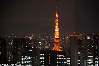 Tokyo tower 2